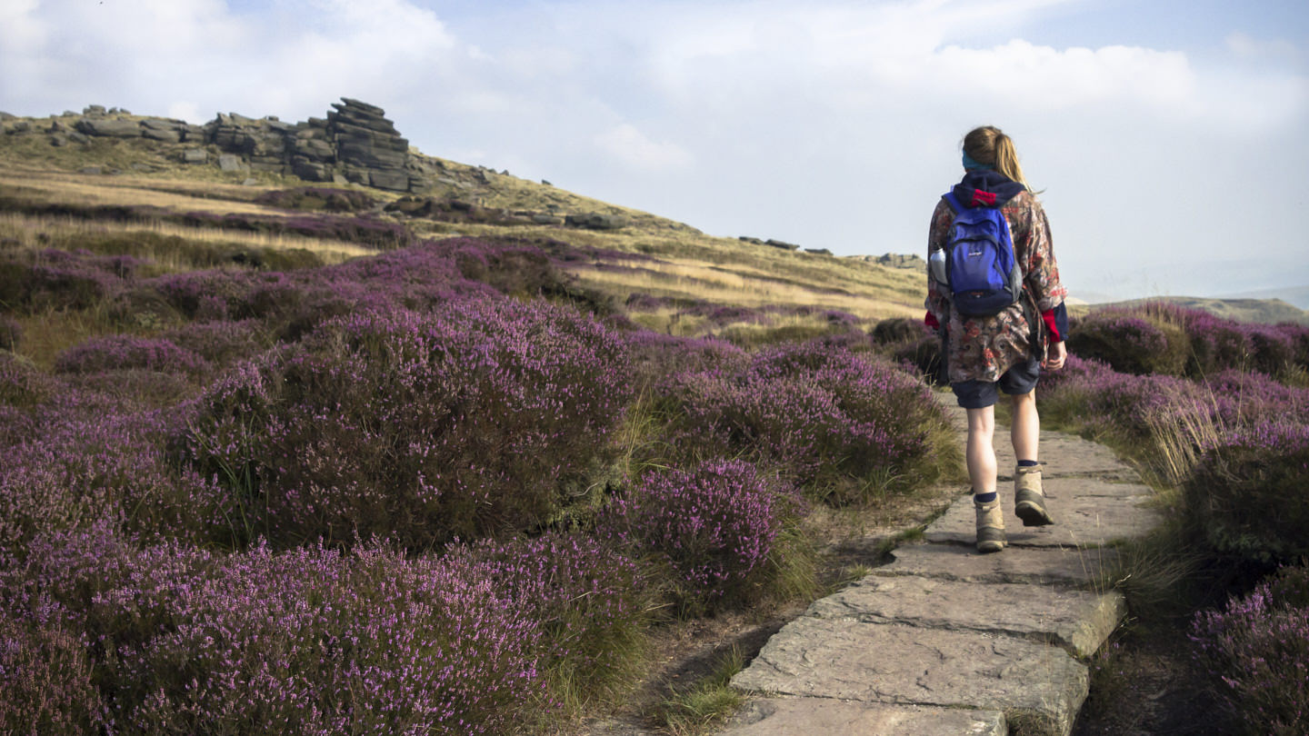 Hollie follows a heather-lined path to stony forms